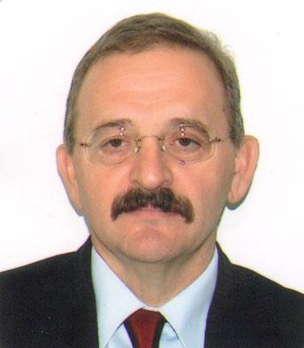 Milan Jokanović